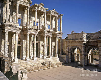 The Library At Ephesus Poster by Alex Cassels