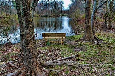 The Lone Bench Poster by Paul Ward