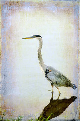 Poster featuring the digital art The Lone Crane by Davina Washington