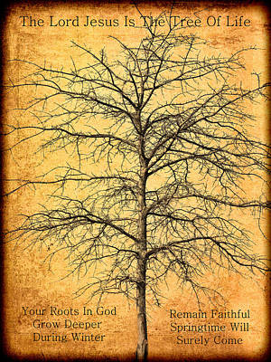 The Lord Jesus Is The Tree Of Life Poster by Kathy Clark