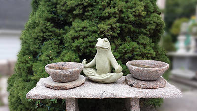 The Meditating Frog Poster by Linda Troski