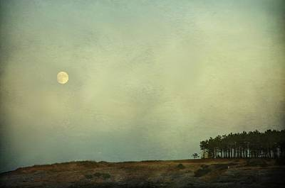 The Moon Above The Trees Poster
