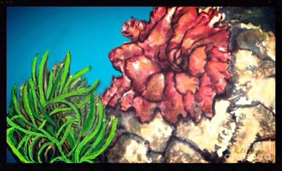 Poster featuring the painting The Odd Couple Two Very Different Sea Anemones Cohabitat by Kimberlee Baxter
