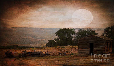 The Old Homestead In Wyoming Poster