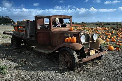 Poster featuring the photograph The Old Pumpkin Patch by Michael Gordon
