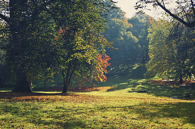 The Park In Autumn Poster