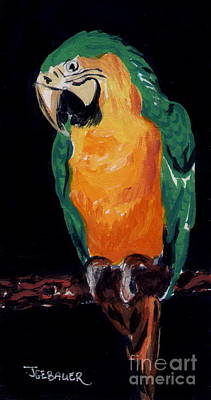 The Parrot Poster by Joyce Gebauer