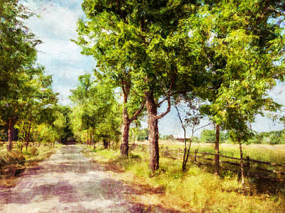 The Path Along The Trees Poster by Celso Bressan