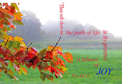 The Path Of Life Poster by Paul Miller
