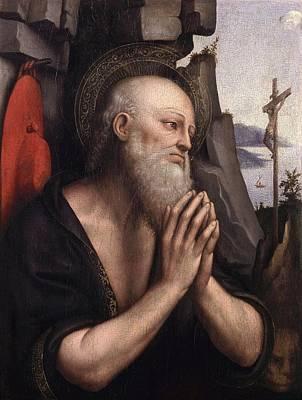The Penitent St. Jerome Oil On Panel Poster by Giovanni Pedrini Giampietrino