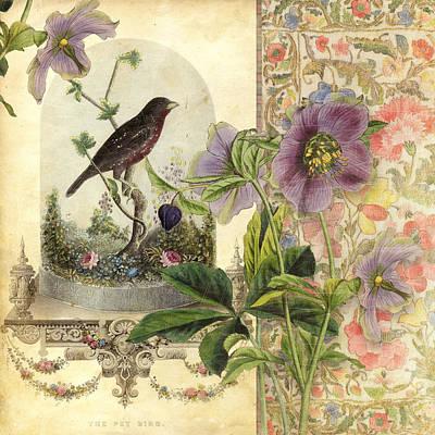 The Pet Bird Poster by Aimee Stewart
