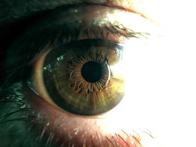 The Physicists Eye Poster
