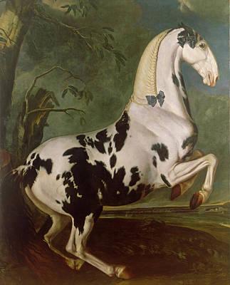 The Piebald Stallion At The Eisgruber Stud Poster by Johann Georg Hamilton