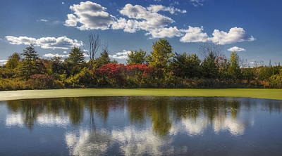 The Pond In Autumn Poster by Steve Gravano
