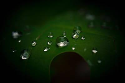 The Rain Fell Poster