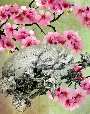 The Rain Is Over And Flowers Appear On The Earth Poster by Sarah Wathen