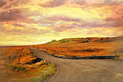 Poster featuring the photograph The Road Less Trraveled Sunset by Marty Koch