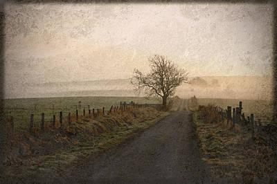 The Road Not Taken Poster by Liz  Alderdice