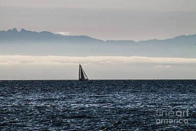 The Sail Boat Horizon Poster by Arlene Sundby