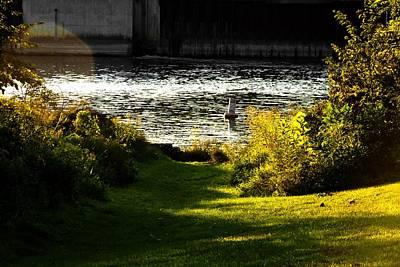 The Saint Joseph River Niles Michigan Poster