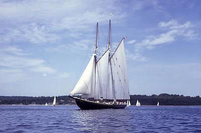 The Schooner Bluenose 2 Poster by George Cousins