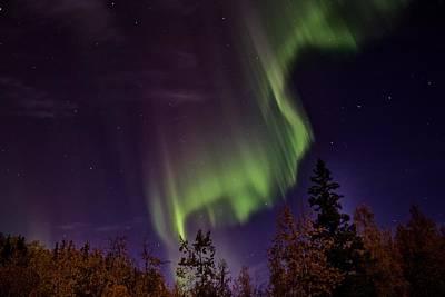 The September Aurora Fairbanks Alaska Poster by Michael Rogers