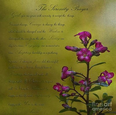 The Serenity Prayer  Poster by MaryJane Armstrong