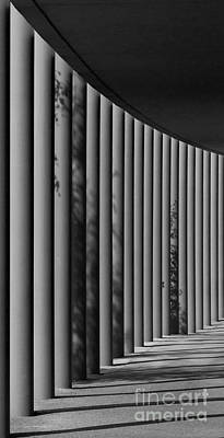 The Shadows And Pillars  Black And White Poster by Mark Dodd