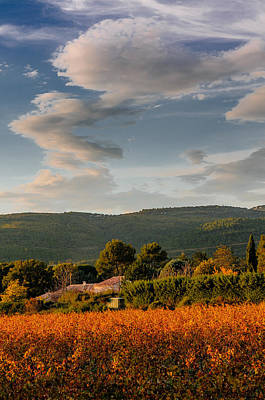 The Sky Over The Wineyard Poster by Alain De Maximy