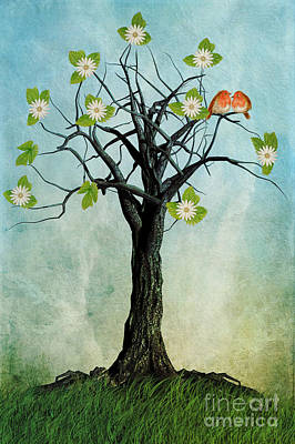 The Song Of Spring Poster by John Edwards