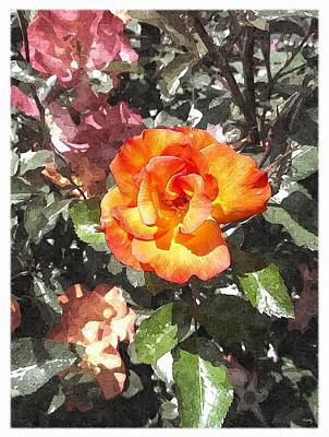 The Spring Rose Poster by Glenn McCarthy Art and Photography