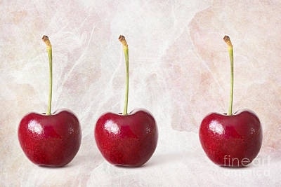 The Three Cherries - Natalie Kinnear Photography - Print And Can Poster by Natalie Kinnear
