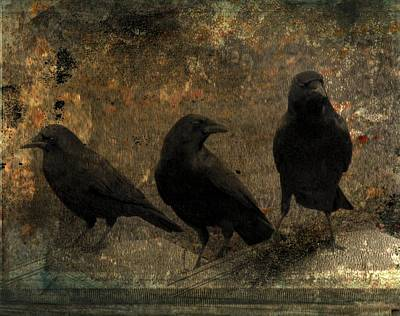 The Three Black Crows Poster by Gothicrow Images