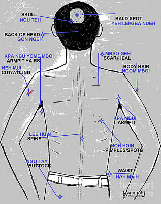 The Upper Posterior Human Body - In Mende Poster by Mudiama Kammoh