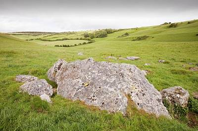The Valley Of Stones Near Portesham Poster by Ashley Cooper