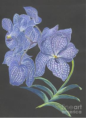 Poster featuring the painting The Vanda Orchid by Carol Wisniewski