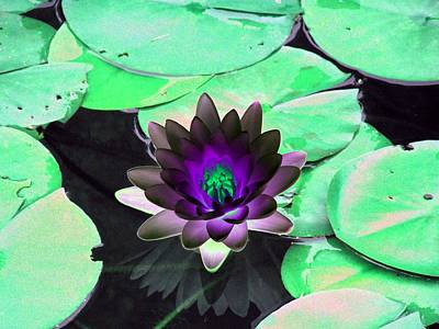 The Water Lilies Collection - Photopower 1113 Poster