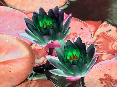 Poster featuring the photograph The Water Lilies Collection - Photopower 1120 by Pamela Critchlow