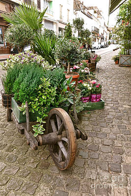 The Wheelbarrow At The Flower Shop Poster