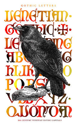 The Wise Raven Poster by Daniel Hagerman