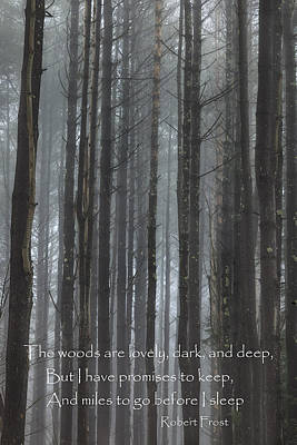The Woods Poster by Bill Wakeley