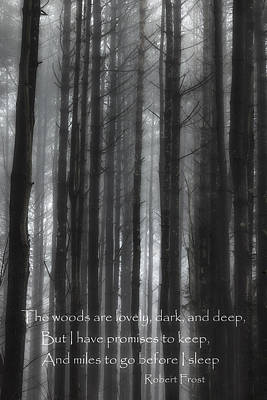 The Woods Black And White Poster by Bill Wakeley