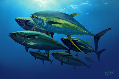 Yellowfin Poster