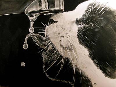 Thirsty 2 Poster by Carol Blackhurst