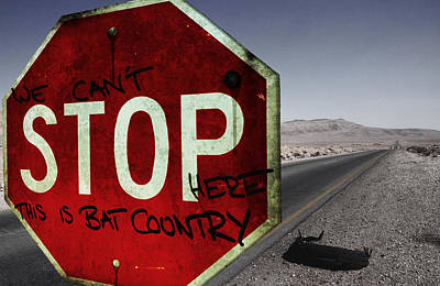 This Is Bat Country Poster by Nicklas Gustafsson