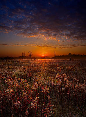 This Time Around Poster by Phil Koch
