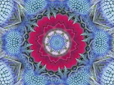 Thistle Portal Mandala Poster