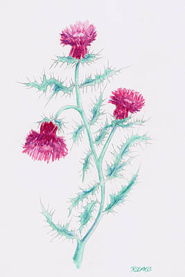 Poster featuring the painting Thistle by Rebecca Davis