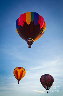 Three Balloons Poster by Inge Johnsson