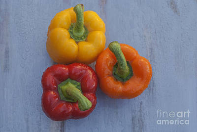 Three Bell Peppers Poster